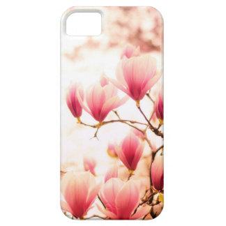Flores de cerezo hermosas - Central Park iPhone 5 Cobertura