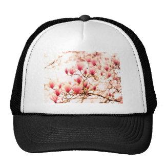 Flores de cerezo hermosas - Central Park Gorro