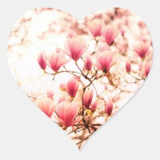 Flores de cerezo hermosas - Central Park Pegatina En Forma De Corazón