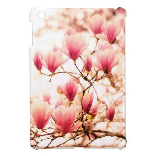 Flores de cerezo hermosas de la primavera