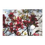 Flores de cerezo impresión en lona