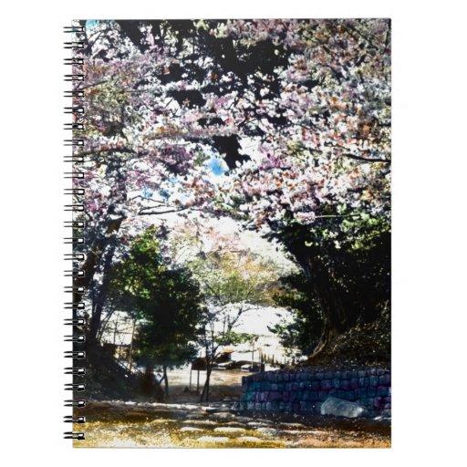 Flores de cerezo japonesas del vintage note book
