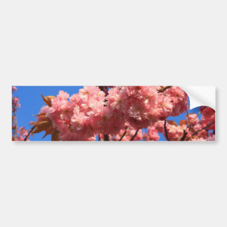 flores de cerezo japonesas pegatina para auto