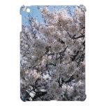 Flores de cerezo japonesas Sakura iPad Mini Cárcasas