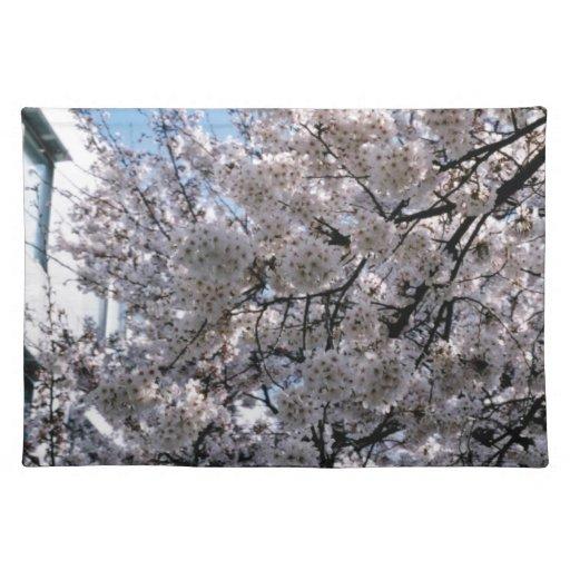 Flores de cerezo japonesas Sakura Manteles Individuales
