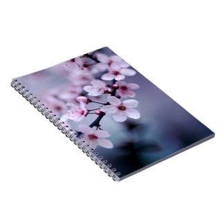 Flores de cerezo libros de apuntes
