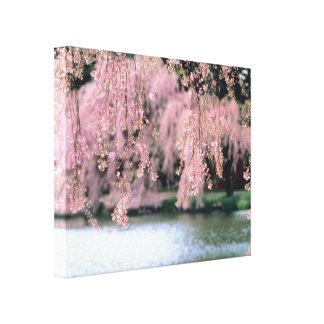 Flores de cerezo impresiones en lienzo estiradas