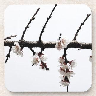 Flores de cerezo minimalistas posavaso