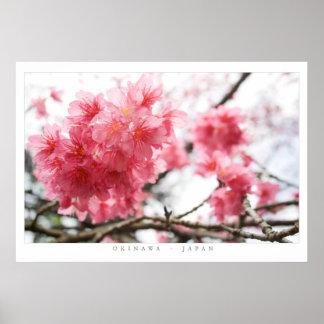 Flores de cerezo impresiones