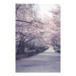 Flores de cerezo  papeleria