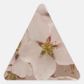 Flores de cerezo calcomanía de triangulo