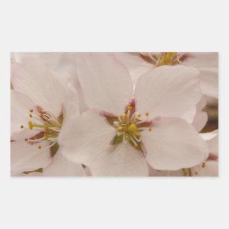 Flores de cerezo rectangular altavoz