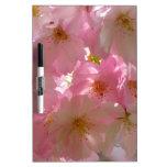 Flores de cerezo pizarras