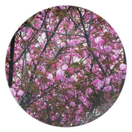 Flores de cerezo platos de comidas