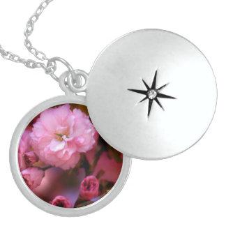 Flores de cerezo preciosas del rosa de la collar redondo