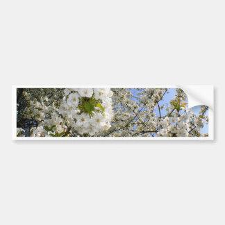 Flores de cerezo, primavera pegatina para auto