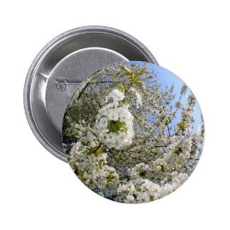 Flores de cerezo, primavera chapa redonda 5 cm