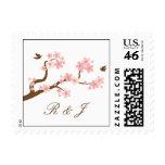 Flores de cerezo rosadas/blanco con el sello de la