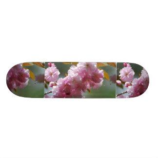 Flores de cerezo rosadas bonitas