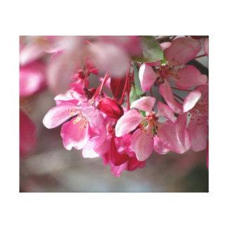 Flores de cerezo rosadas impresiones de lienzo