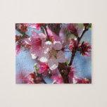 Flores de cerezo rosadas puzzles