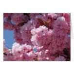 Flores de cerezo rosadas tarjeta de felicitación