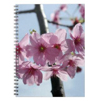 Flores de cerezo rosadas y cielo azul claro libro de apuntes