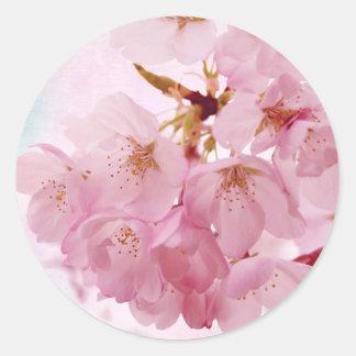 Flores de cerezo suaves del rosa del vintage pegatina redonda