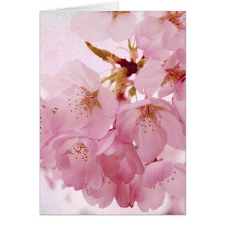 Flores de cerezo suaves del rosa del vintage tarjeta pequeña