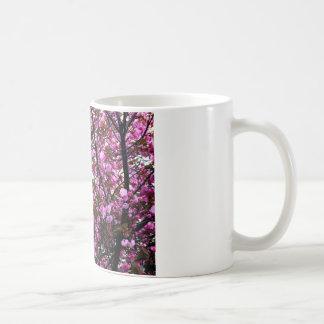 Flores de cerezo taza de café