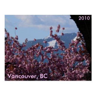 Flores de cerezo y Juegos Olímpicos de Invierno Postal