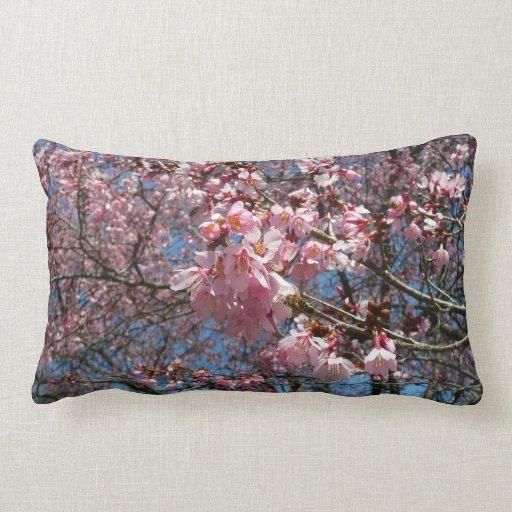 Flores de cerezo y primavera rosada de la abeja cojín