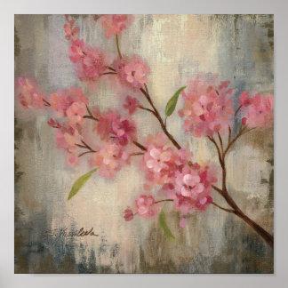 Flores de cerezo y rama póster