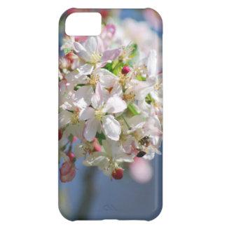 Flores de cerezo y significado