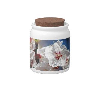 Flores de cerezo y significado tarro de cerámica para dulces