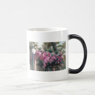 Flores de conexión en cascada taza mágica