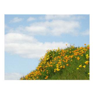 Flores de encargo de papel de la amapola del cielo plantillas de membrete
