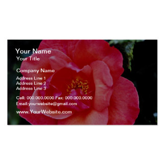 Flores de Floribunda Tarjeta De Visita