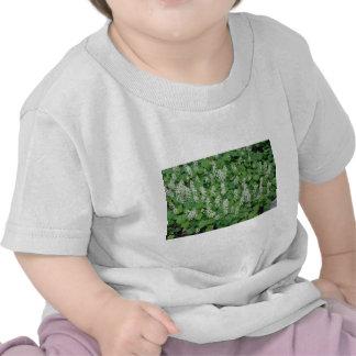 Flores de Foamflower (Tiarella Cordifolia) Camisetas