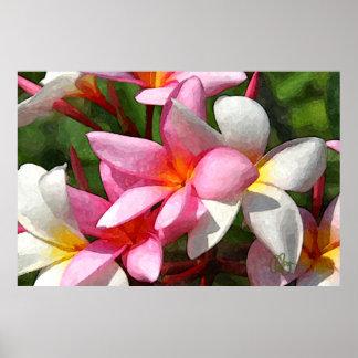Flores de Hawaii Póster