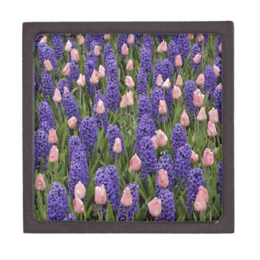 Flores de Holanda, de jacintos y de tulipanes rosa Cajas De Recuerdo De Calidad