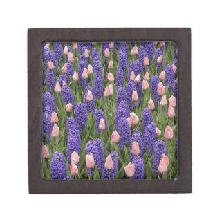 Flores de Holanda de jacintos y de tulipanes rosa Cajas De Regalo De Calidad