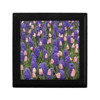 Flores de Holanda de jacintos y de tulipanes rosa Cajas De Recuerdo