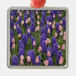Flores de Holanda de jacintos y de tulipanes rosa Adornos De Navidad
