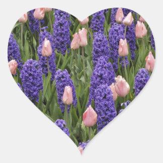 Flores de Holanda de jacintos y de tulipanes rosa Pegatinas