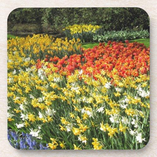 Flores de Holanda, Keukenhof Posavaso