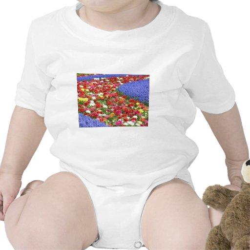 Flores de Holanda, Keukenhof Trajes De Bebé