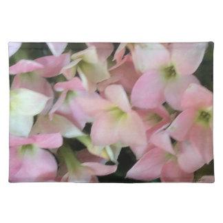 Flores de Kalanchoe Manteles