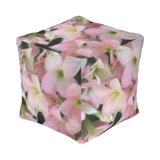 Flores de Kalanchoe Puff Cuadrado