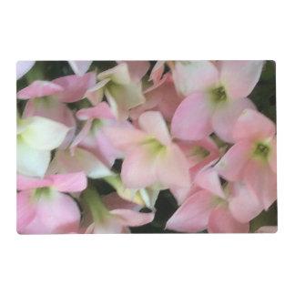 Flores de Kalanchoe Tapete Individual